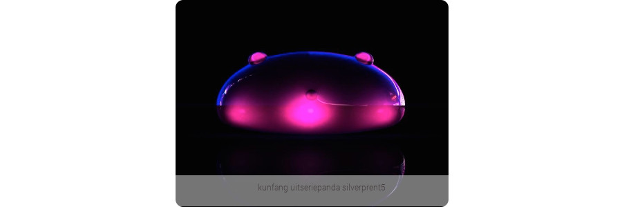 kunfang_uitseriepanda_silverprent5