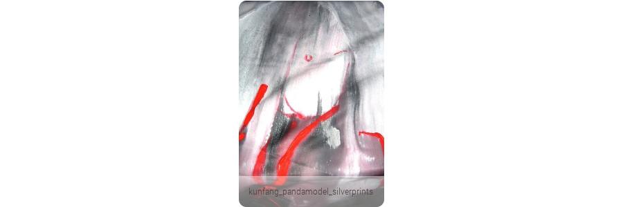 kunfang_pandamodel_silverprints